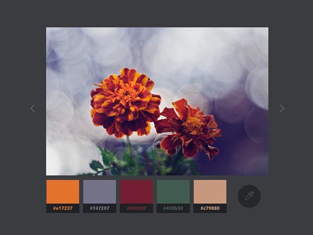color extractio effect codrops
