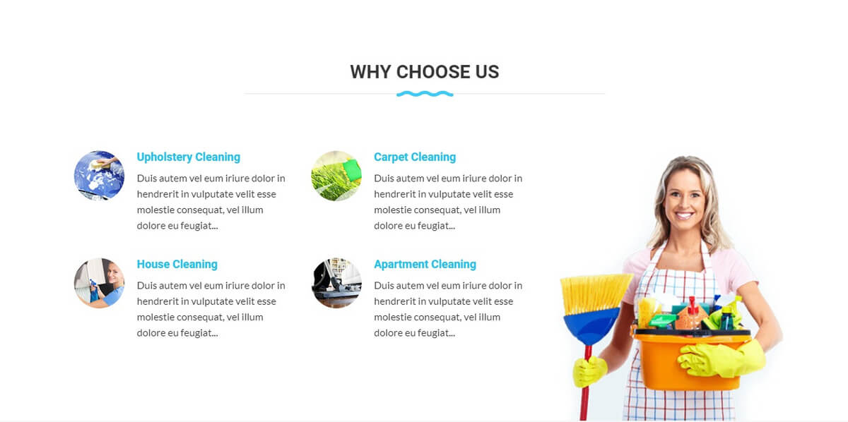 cleaning whychooseus