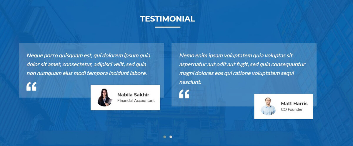 logitrans testimonial
