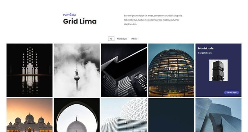 grid lima thumb